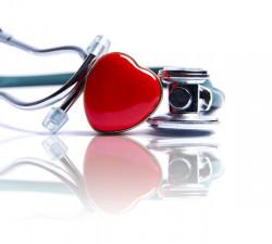 Bohnen und Linsen senken den Blutdruck.