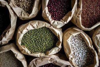 Bohnen und Linsen sind eine sehr gute pflanzliche Proteinquelle